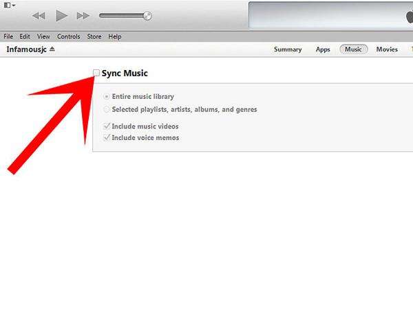iPod/iPod touchへ自動的に音楽を転送する