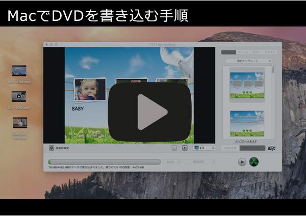 dvd作成手順