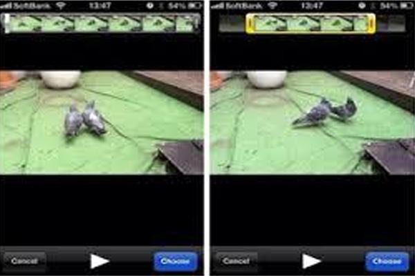 VideoPrivacy