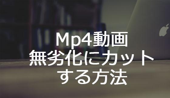 MP4無劣化トリミングをマスターしよう
