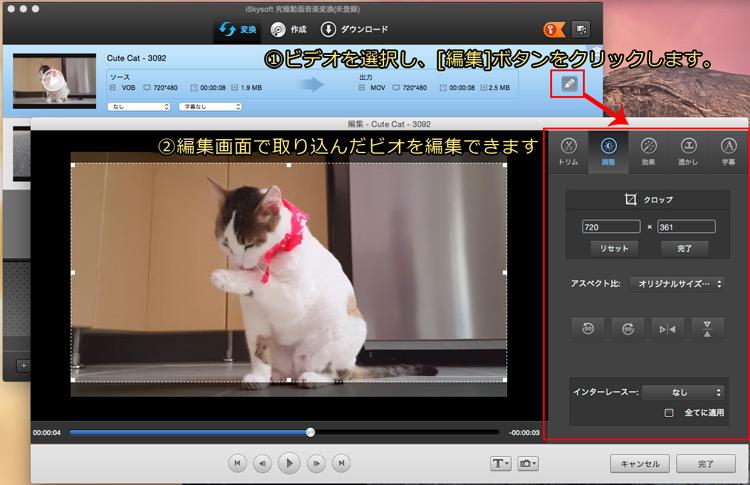 video_ts動画を簡単編集してから、変換する(オプション)