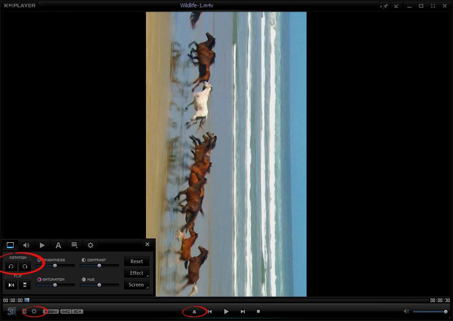 KMPlayerで動画ファイルを回転