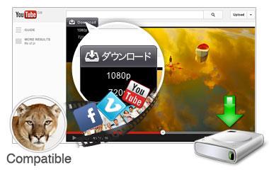 Web動画をダウンロード
