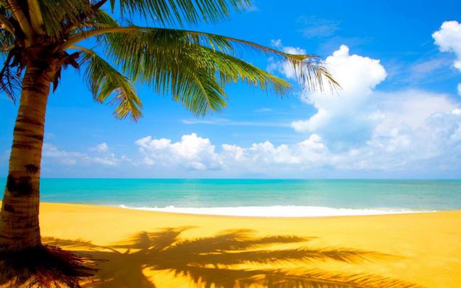 夏休み 海外旅行ランキング